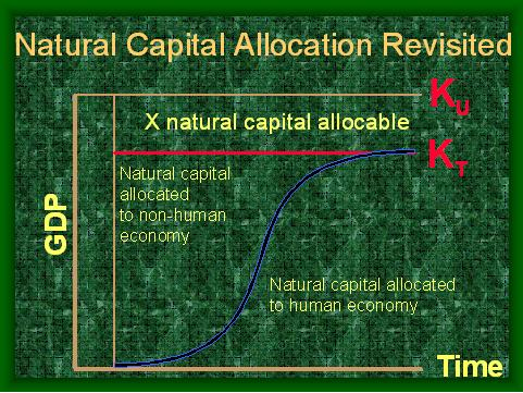 ALLOCATION  Ku  Kt.JPG